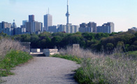 Don River Valley Trail
